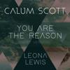 You Are the Reason (Duet Version) - Calum Scott & Leona Lewis