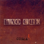 Lao Che - Gusła artwork