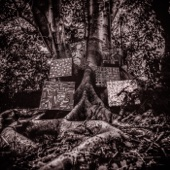 Kamasi Washington - Harmony of Difference  artwork