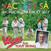 Vackert så (feat. Tony Irving) [Inofficiell Pridelåt 2017]