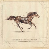 Turnpike Troubadours - A Long Way from Your Heart  artwork