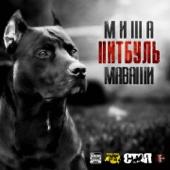 Миша Маваши - Питбуль обложка