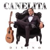 Divino - Canelita