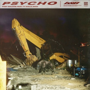 POST MALONE feat TY DOLLA $IGN - Psycho Chords and Lyrics