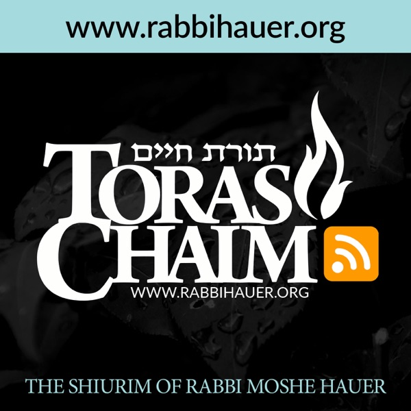 Toras Chaim - The Shiurim of Rabbi Moshe Hauer