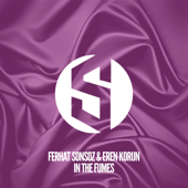 In the Fumes (Radio Mix)