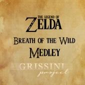 Medley Zelda Breath of the Wild: Main Theme / On Horse / Rito Village / Hyrule Castle / Beast Ganon