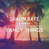Shaun Bate & Ahsha - Fancy Things Grafik