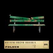 Paluch - Gdybyś Kiedyś artwork