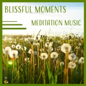 Blissful Moments – Meditation Music: Healing Relaxation & Calm Your Mind & Body & Soul