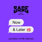 Now and Later (James Hype Remix) - Single