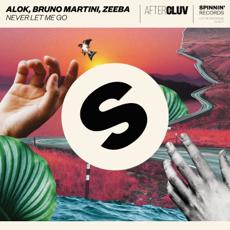 Baixar Never Let Me Go - Alok, Bruno Martini & Zeeba