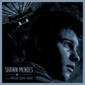Three Empty Words (Live at Madison Square Garden/2016) - Shawn Mendes