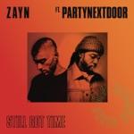Still Got Time (feat. PARTYNEXTDOOR) - Single