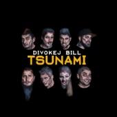 Tsunami - Divokej Bill