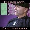 Cand Vine Seara - Single, Nicolae Guta