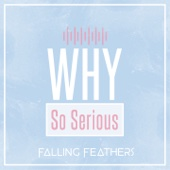 Why So Serious - Falling Feathers