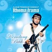 Udang di Balik Batu (feat. Rita Sugiarto) - Rhoma Irama