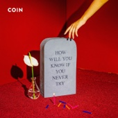 How Will You Know If You Never Try - COIN Cover Art