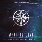 What Is Love 2016 (Dimitri Vegas & Like Mike Remix)