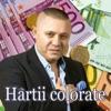 Hartii Colorate - Single, Nicolae Guta