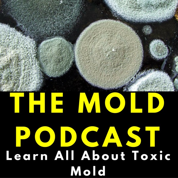 The Mold Podcast