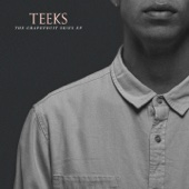 TEEKS - Never Be Apart artwork