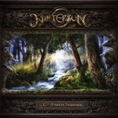 Download The Forest Seasons - Wintersun on iTunes (Death Metal/Black Metal)