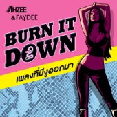 Ahzee & Faydee - Burn It Down (Extended Mix) artwork