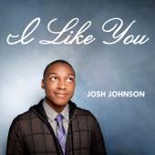 I Like You - Josh Johnson