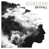 Buscemi - Skyfall