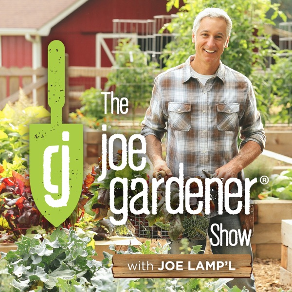 The joe gardener Show - Grow Like a Pro - Organic Gardening - Vegetable Gardening - Expert Gardening Advice From Joe Lamp'l