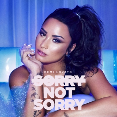 Sorry Not Sorry - Demi Lovato song