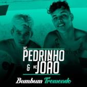 Bumbum Tremendo (feat. Mc João)