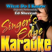 What Do I Know (Originally Performed By Ed Sheeran) [Instrumental]