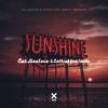Cat Dealers, LOthief & Santti - Sunshine (feat. Santti) artwork