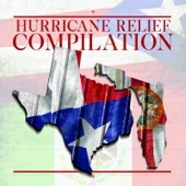 The Hurricane Relief Compilation - 40 Days - Various Artists