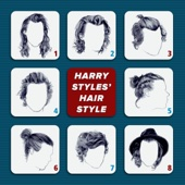 Harry Styles' Hair Style