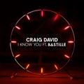 Craig David - I Know You (feat. Bastille)