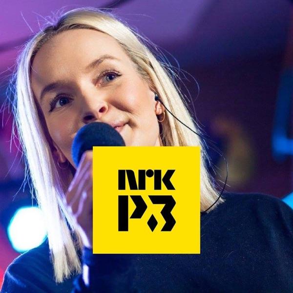 NRK – Karriereveilederen