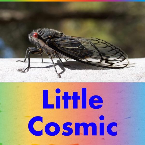 Little Cosmic