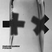 Poison - Martin Garrix