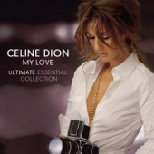 Céline Dion - It's All Coming Back to Me Now artwork