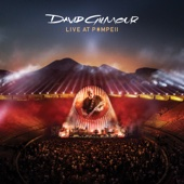 David Gilmour - Live at Pompeii artwork