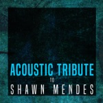 Acoustic Tribute to Shawn Mendes (Instrumental)