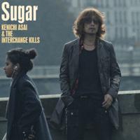 浅井健一&THE INTERCHANGE KILLS - Sugar artwork