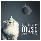 Anti Anxiety Music for Cats - Soothe Cat Stress, Pet Therapy, Soothing Sleep, Calm Down