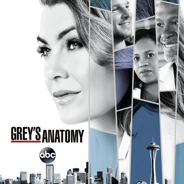 greys anatomie staffel 14