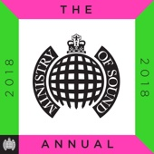 Various Artists - Ministry of Sound: The Annual 2018 artwork