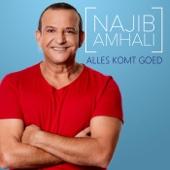Alles Komt Goed 2017 Mix - Najib Amhali